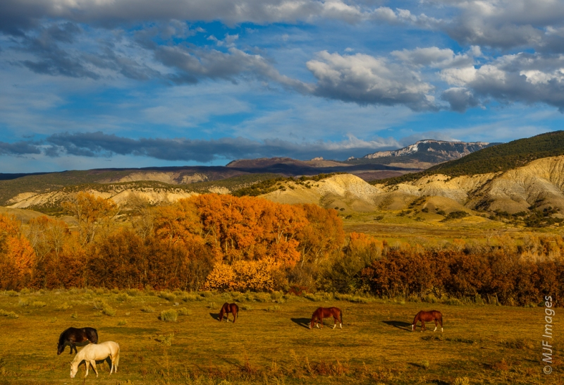 Ranch land at the foot of the San Juan Mountains.