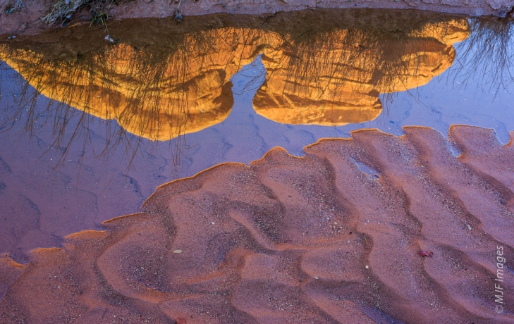 Rare desert rainfall has temporarily provided this draw in Canyonlands National Park with water.