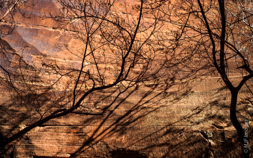 A rocky alcove in Devil's Kitchen, Canyonlands National Park, catches warm sunshine.