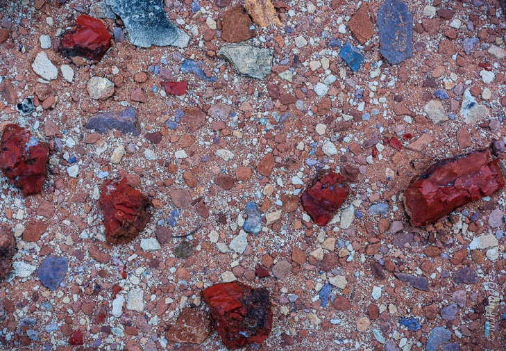 Jasper weathered from a nearby outcrop lies scattered on the desert floor in Canyonlands National Park, Utah.