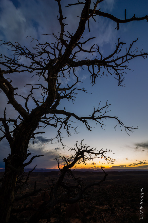 A survivor in Arches National Park overlooks a desolate valley at dusk.