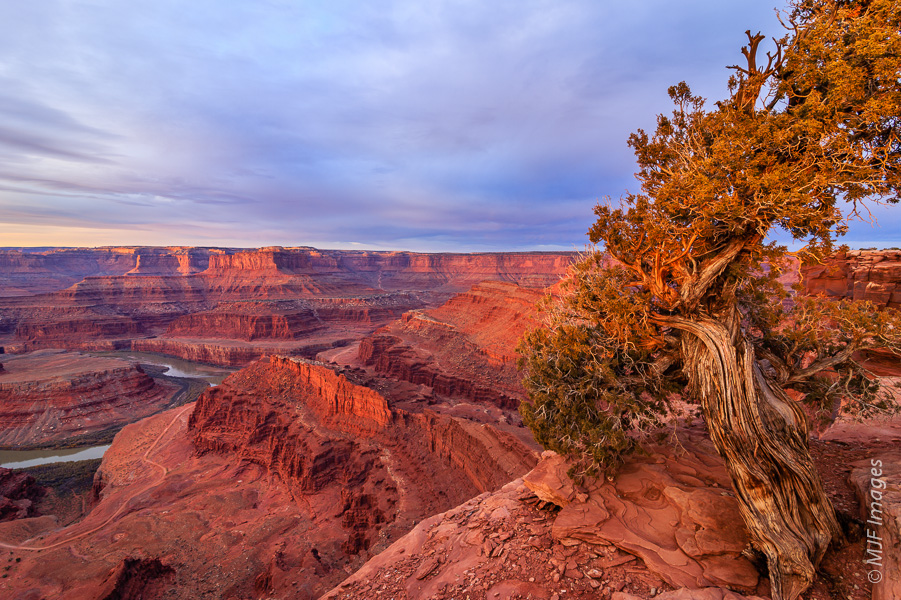 Deadhorse Point in Utah is a very popular spot to photograph at both sunrise and especially sunset.