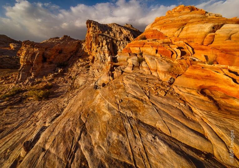 The fascinating textures and patterns in the sandstone of Valley of Fire are highlighted by a low sun.