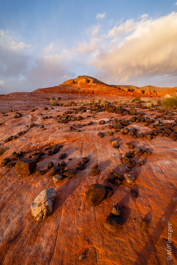 Near sunset on the sandstone at Valley of Fire.