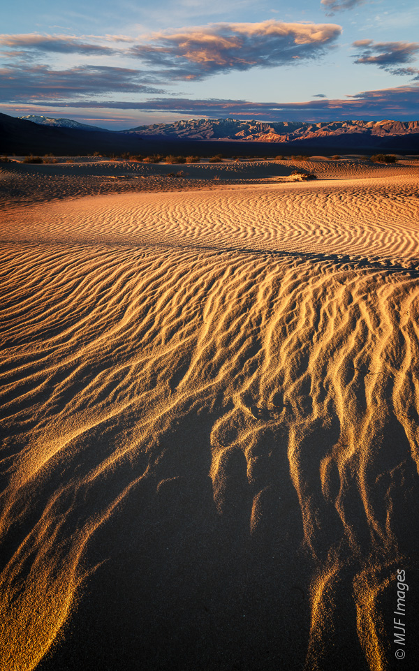 Shadow and winter light play games in the sand dunes of Death Valley National Park, California.