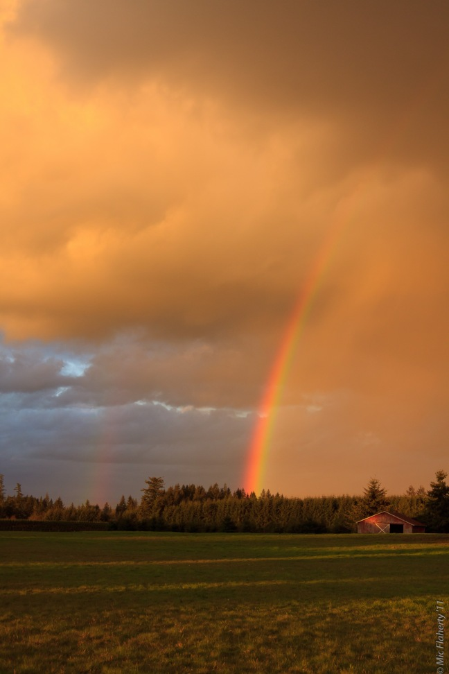 Click image to purchase.  Late winter blends into spring in Oregon with a gorgeous rainbow.