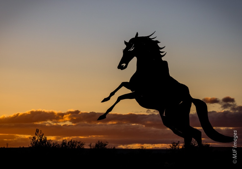 A sculpture of a wild Kiger mustang is actually in my home state, Oregon's eastern desert.