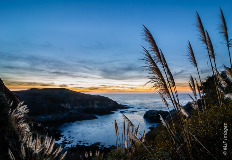 The Big Sur coast at dusk.  I love those tall wispy plants which grow all over this coast.