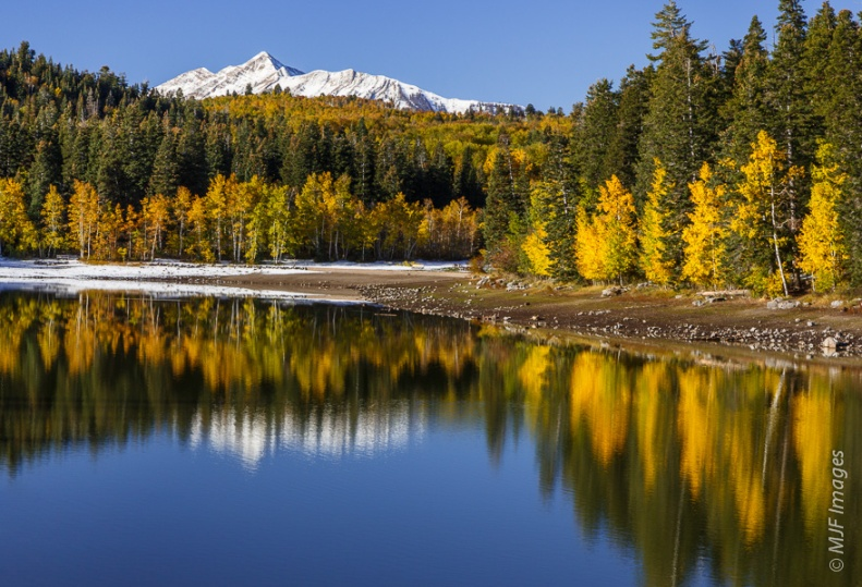 Autumn in Utah's Wasatch Mountains means quaking aspen in their golden glory.