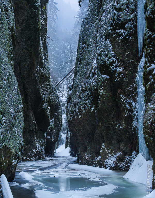 Oneonta Gorge in Oregon's Columbia Gorge Scenic Area  is not an easy place to access in winter.
