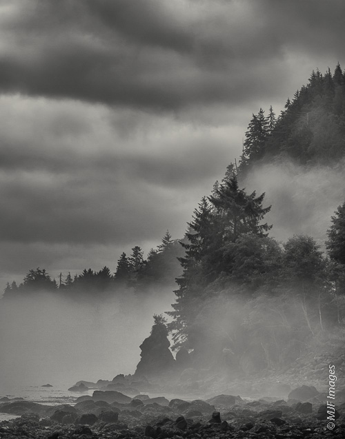 The rugged coast along the northern Olympic Peninsula in Washington is often wrapped in fog.