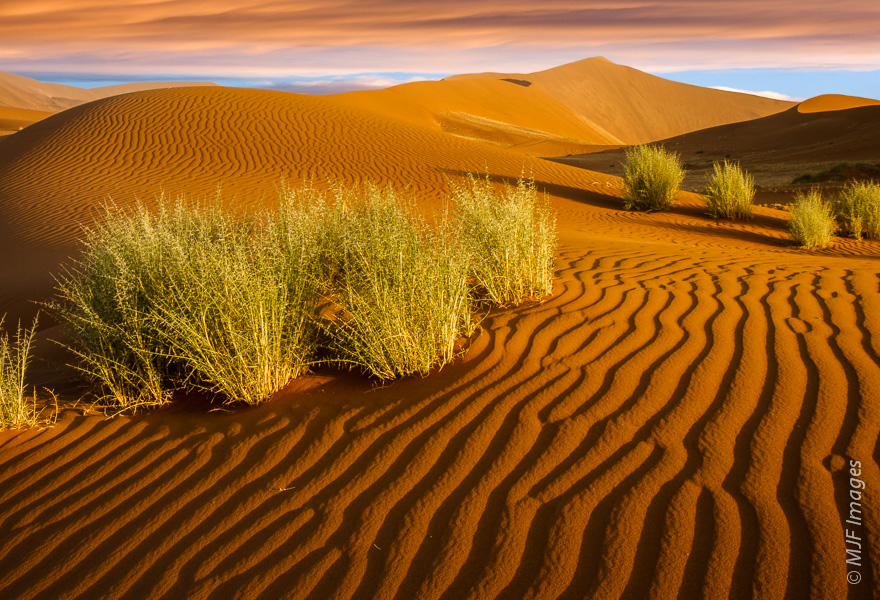 Sunset in the dunes of the Namib Desert.