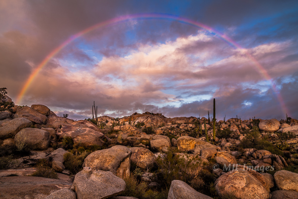 A rare morning rainbow in the desert graces my campsite one morning on the Baja Peninsula, Mexico.  Click for purchase options.