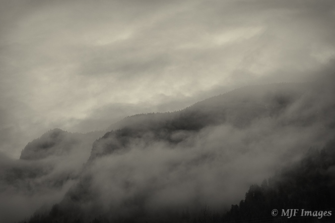 Winter weather brings moody clouds in the forests of western Oregon.