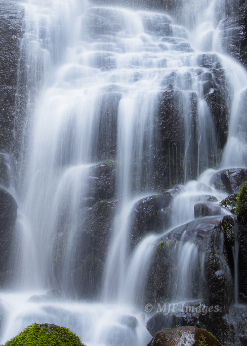 One of the Columbia Gorge's prettiest waterfalls is Faery Falls.