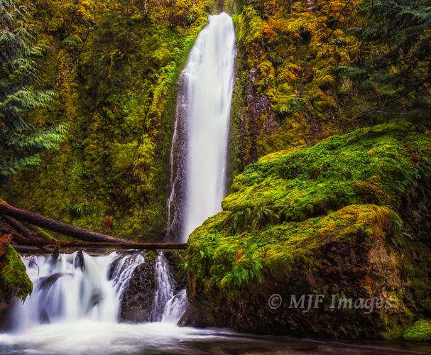 Gorton Creek Falls in Oregon's Columbia River Gorge Scenic Area.