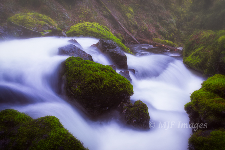 Creek and moss, Columbia River Gorge, Oregon