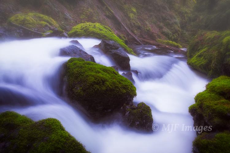 Creek and moss, Columbia River Gorge, Oregon