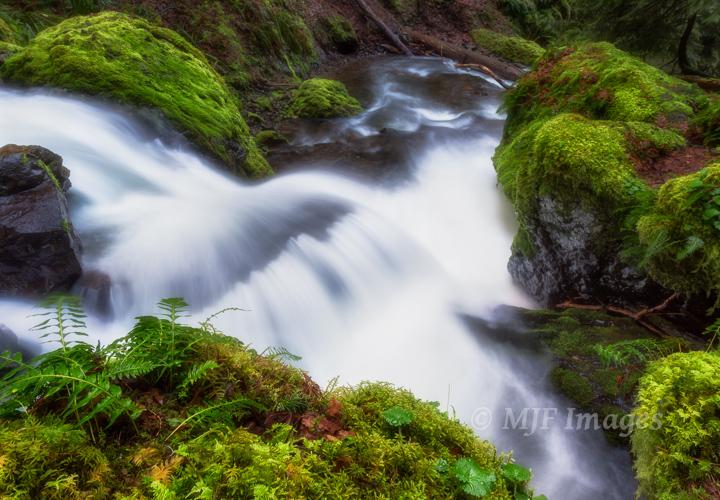 Gorton Creek, Columbia River Gorge