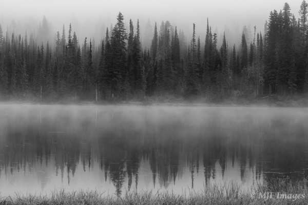 Mist and fog shrouds the celebrated view of Mount Rainier from Reflection Lakes.