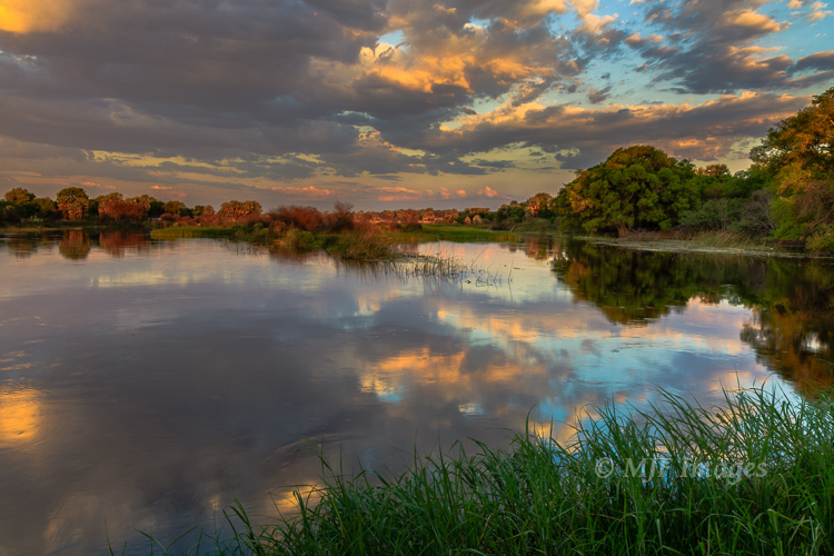 The flooded wetlands of Botswana's Okavango Delta are a magnet for Africa's amazing wildlife.