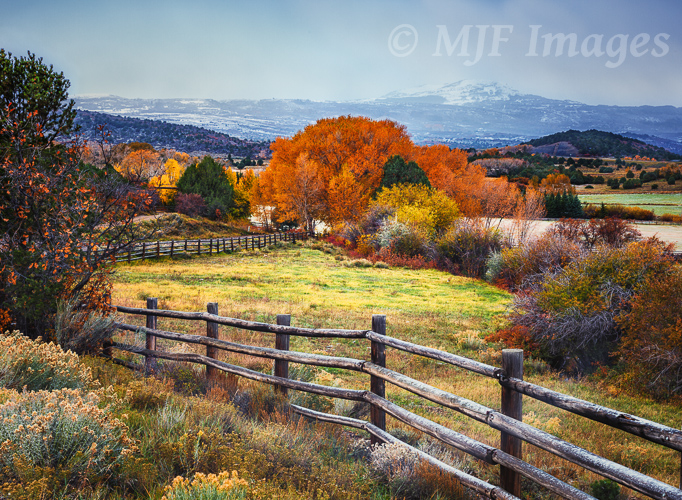 A skiff of snow overnight and a very frosty autumn morning near Dallas Divide in Colorado's Rocky Mountains.