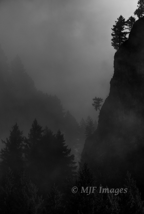 Fog moves in towards evening in Oregon's Columbia River Gorge.