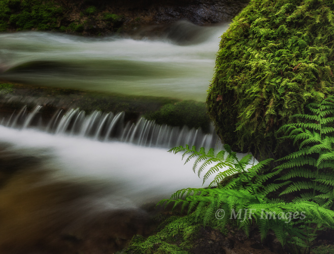 Elowah Creek, Columbia River Gorge, Oregon