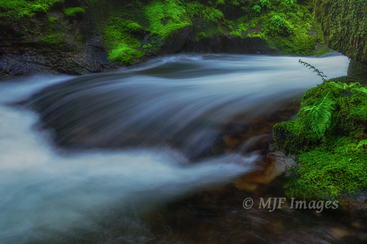 Spring brings the water flowing down theverdant side canyons (such as Elowah Creek) of Oregon's Columbia Gorge.