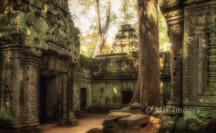 This interior courtyard in the ancient Khmer ruins of Ta Prohm, Cambodia was a contrast nightmare.