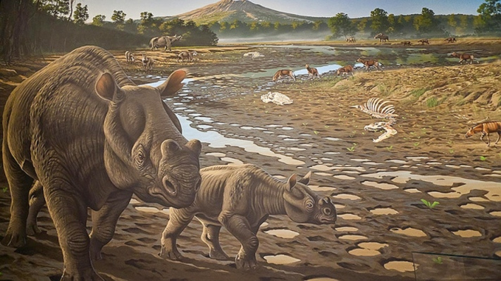 A mural depicting life in Eocene Oregon.