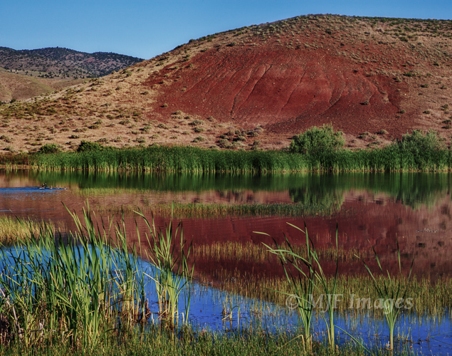 In the Painted Hills, a family of geese makes its way across a rare stretch of water in this dry area of eastern Oregon.