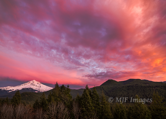 This shot of Oregon's Mount Hood was framed so as to show some of the surrounding forest.