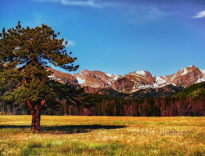 The view from Glacier Meadows Campground, Rocky Mountain National Park.