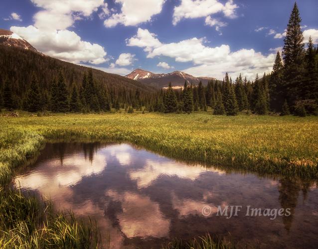 Meadows along the upper Colorado River, Rocky Mountain National Park.
