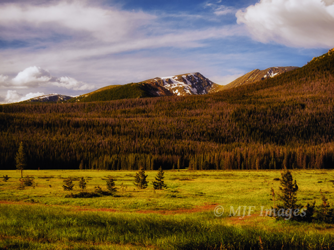 Big Meadows, Rocky Mountain National Park, Colorado.