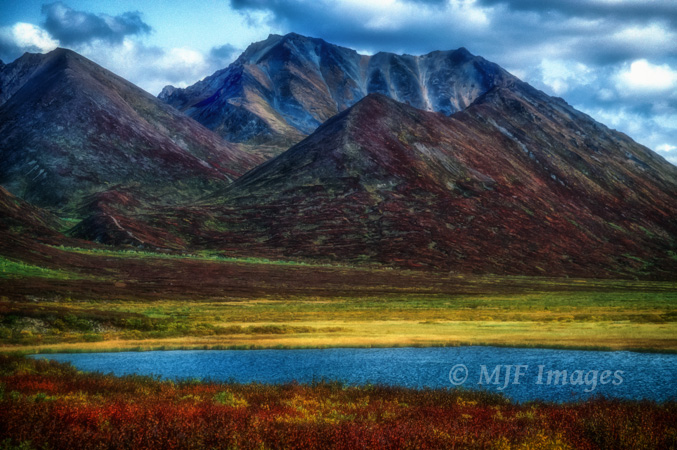 Alaska tundra in early autumn.