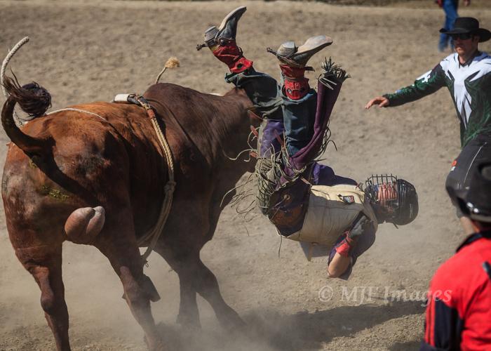 Arlington_Rodeo_5-13-12_5D_304