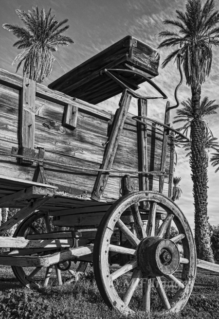 Classic buckboard wagon, Death Valley, California.