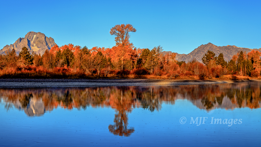 Fall colors at the Grand Tetons, in a different part of Oxbow Bend than most shoot from.