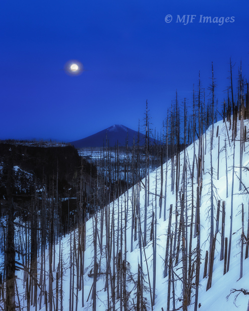 The moon & Black Butte form the background to these burned trees while skiing above Santiam Pass, Oregon