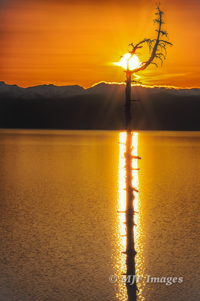 Clear weather forces you to get creative:  sunset at Lake Tahoe, California.