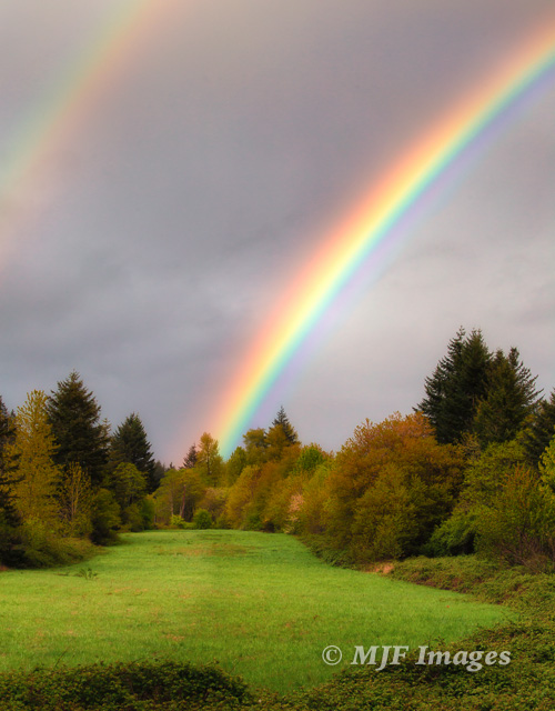 A double rainbow graced the sky as I was visiting some of my old haunts in the Columbia River Gorge the other day.