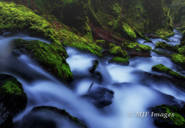 A long exposure in gathering dusk of Gorton Creek's verdant little canyon.
