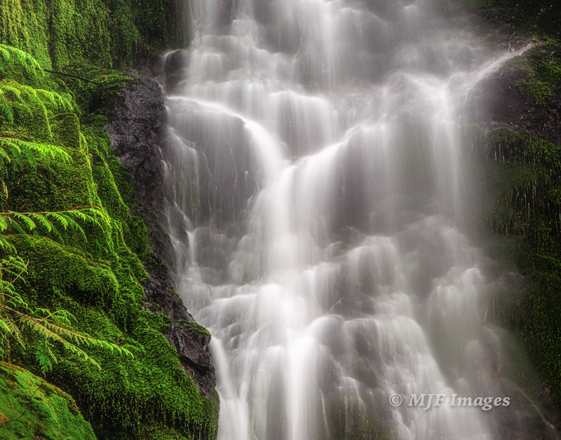A verdant alcove in OIympic National Park hosts Merriman Falls.  Wonder what it'd be like to shoot it from underneath!