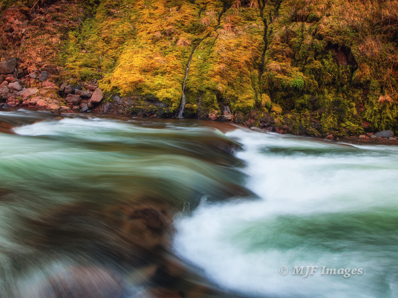 A mossy spring on the Hood River, Oregon.  24 mm., 0.8 sec. @ f/11, ISO 50.
