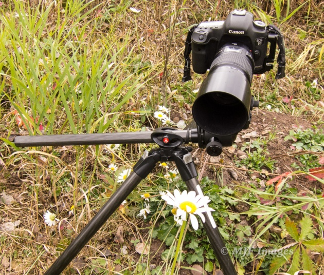 My tripod allows me to go lower by rotating the center column to horizontal.