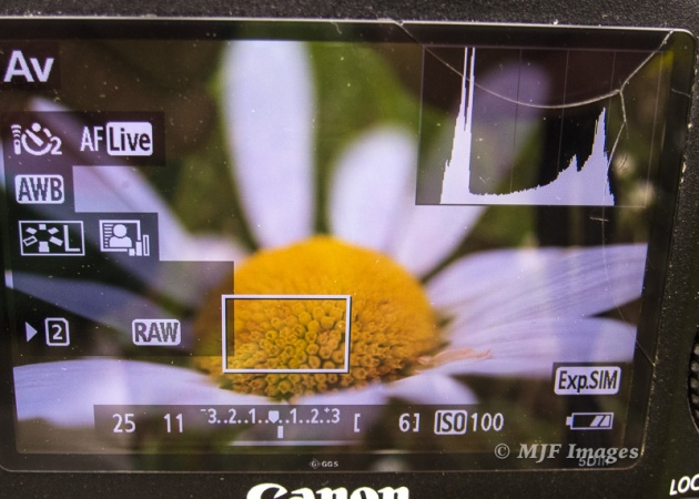 "LiveView with histogram. Also make sure your camera's LiveView setting is on ""Exposure Simulation""."