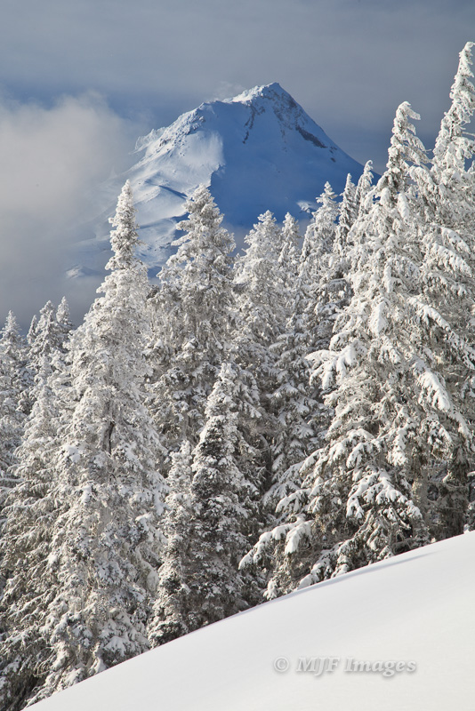 A pause while descending a snowy slope near Mt. Hood, Oregon.