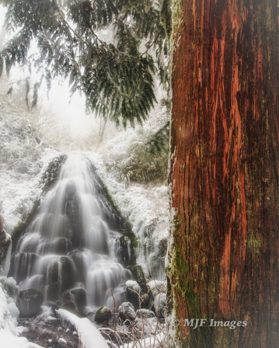 Fairy Falls in winter, Columbia River Gorge, Oregon.